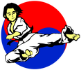 The place to learn martial arts the Safe and fun way - family atmosphere (Starting age 3yrs & OLDER)
